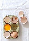 A whole egg, empty eggshells and a cracked-open egg in an egg box