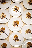 Artfully composed main-course plates for a pop-up fundraiser dinner with seasonal produce