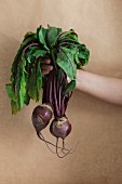 A woman holding two beetroots