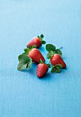 Fresh strawberries with leaves on a blue surface