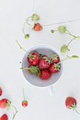 Strawberries in a porcelain cup on a white wooden surface