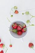 Erdbeeren in Porzellantasse auf weißem Holzuntergrund