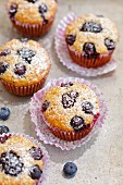 Muffins with oats, blueberries and blackberries