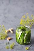 Pickles mit Dill, Meerrettich und Knoblauch