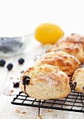 Blueberry and lemon scones cooling on a rack