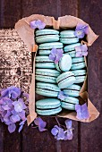 Aquafaba vegan macaroons with an avocado and chocolate filling in a vintage biscuit tin with purple flowers