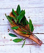 Bay leaves on a wooden spoon