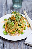 Kelp noodles with carrots, Edamame beans and cress