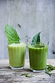 Wild herb smoothies with stinging nettles and dandelions