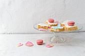 Lemon cake with quark cream and rose-flavoured macarons