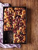 Schiacciata (Italian grape cake)