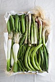 Spring vegetables (peas, green asparagus, spring onions and green beans) in a box