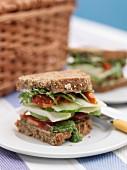 A BLT sandwich for a picnic
