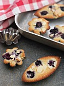 Blueberry & almond friands