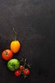 Verschiedene Tomaten auf schwarzem Untergrund