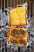 Salmon fillets on barbecue