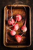 Red beet in an old baking tray