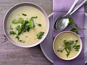 Light cheese soup with green asparagus