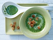 Spinatsuppe mit Croutons und Ingwer