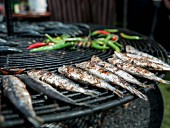 Sardines and chilli peppers on the barbecue