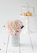 Hydrangea flowers and miniature Bundt cakes