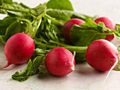 Fresh radishes with leave (close-up)