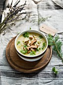 Chanterelle mushroom soup with parsley