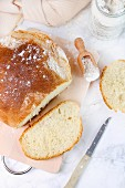 Home-baked white bread