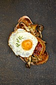 Toasted bread with mushrooms, bacon and fried egg