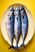 Three mackerel on a serving plate (seen from above)