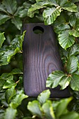 A wooden chopping board in a hedge