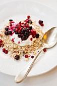 Haferflocken mit griechischem Joghurt und Johannisbeeren