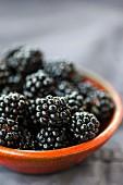 Blackberries in an orange bowl