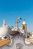 A stork's nest in Olhao in the Algarve region of Portugal
