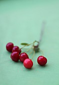 Cherries on a green surface