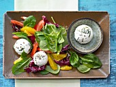 Wild garlic and cream cheese balls with orange and lamb's lettuce salad