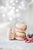 Weihnachts-Macarons mit zerkleinerter Zuckerstange gefüllt