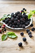 A plate of freshly picked blackberries with leaves