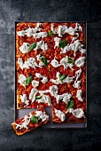 A pizza with tomatoes, burrata and basil on a baking tray