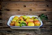 Frische Bio-Äpfel in Emailschale auf Holzuntergrund