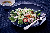 Cucumber salad with radish and pepper