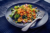 Red lentil salad with radish