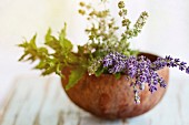 Bouquet of fresh aromatic garden herbs mint, thyme and lavender in half of coconut shell