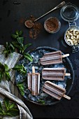 Ceamy chocolate mint popsicles (vegan)