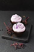 Cupcakes with an elderberry cream topping