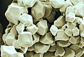 Rice starch granules