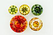 Sphalerite Cut Gemstones