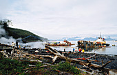 Cleanup After Exxon-Valdez Spill