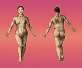 Pressure Points,Female