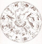 Star Map from 'Oedipus Aegyptiacus'